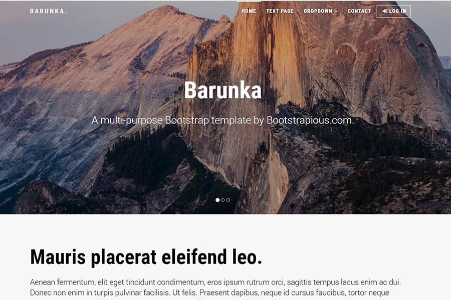 Barunka - Multi-purpose Bootstrap Template